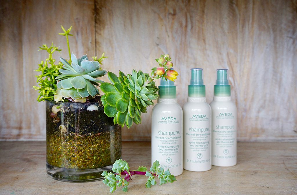 Love Your Non-Wash Hair Day with Aveda Shampure Thermal Dry Conditioner