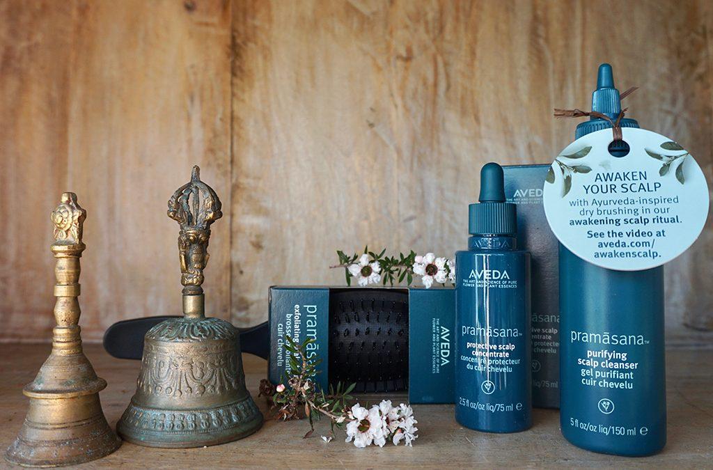 aveda pramansana awakening scalp ritual set
