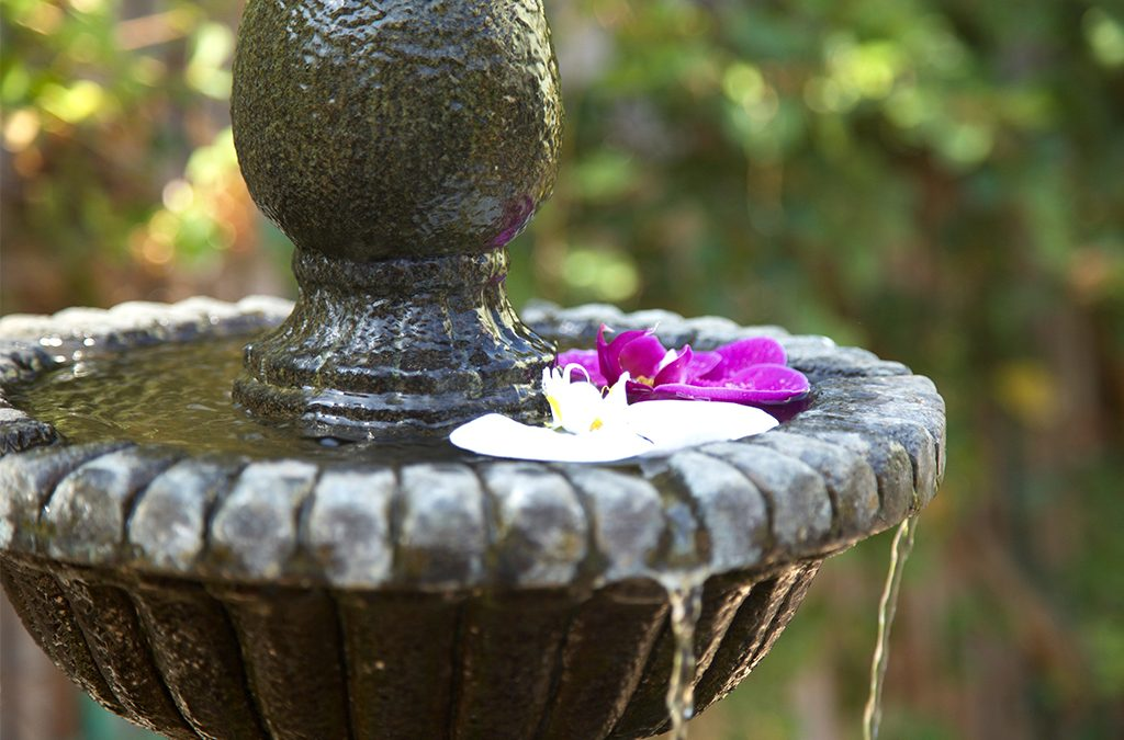 lemongrass aveda salon and spa encinitas | overflowing water fountain with flowers