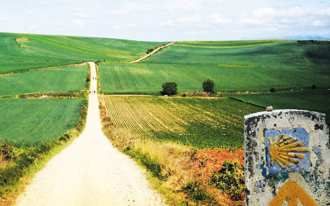 One of Our Very Own Pioneers The Camino De Santiago